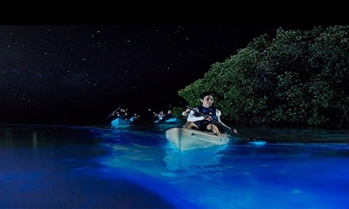 Andaman tour packages from chennai