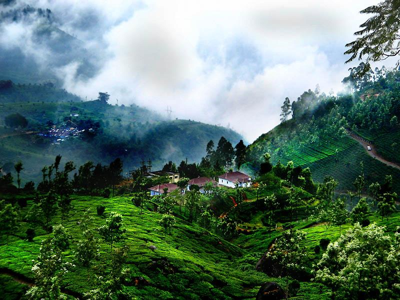 Munnar Hill Station Kerala - Beautiful Photos (1)