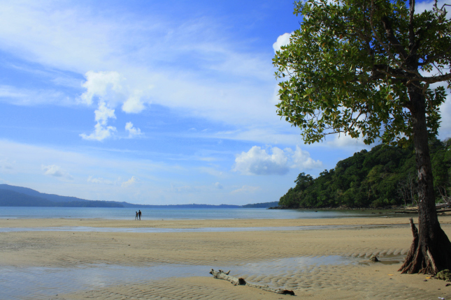 andaman attractions