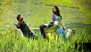 honeymoon-packages-munnar