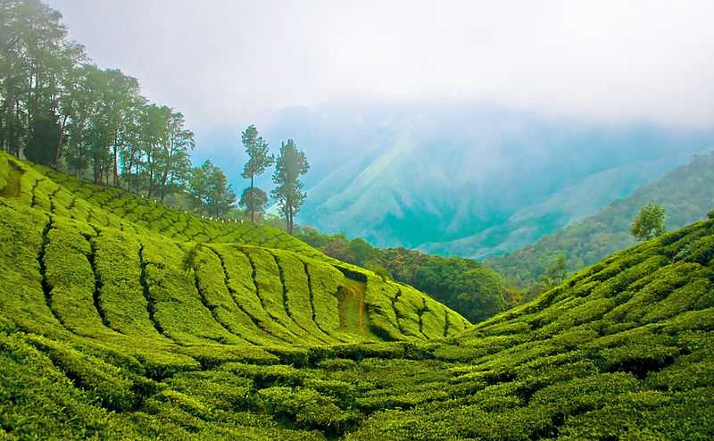 kerala tourism package with price