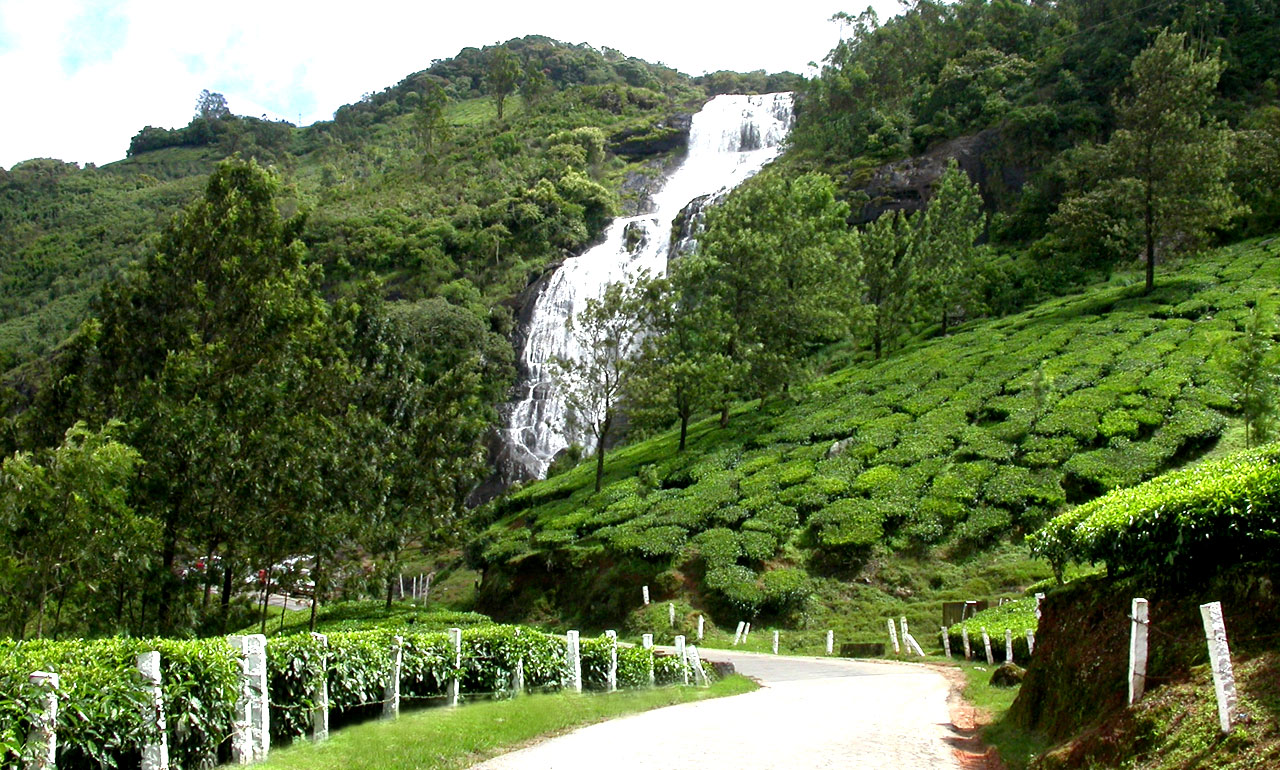 Best honeymoon packages in Kerala