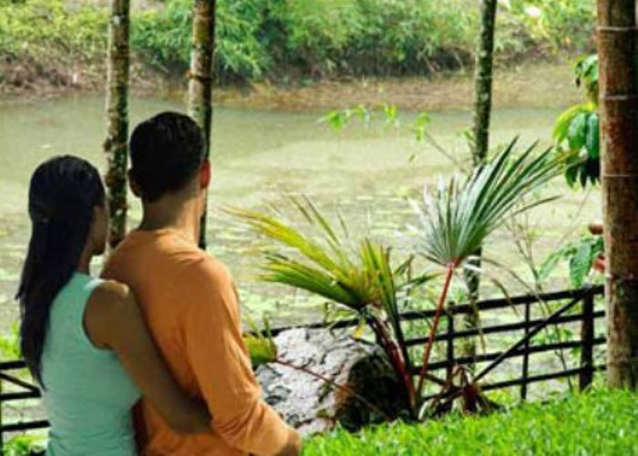 valentine-day-package tourism in Kerala