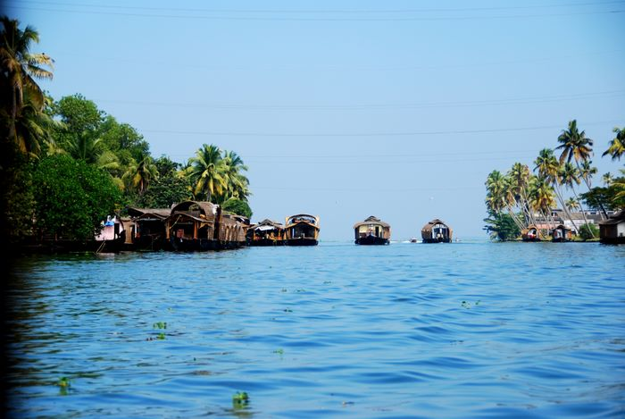 The Punnamada lake,Alleppey,Kerala,India.