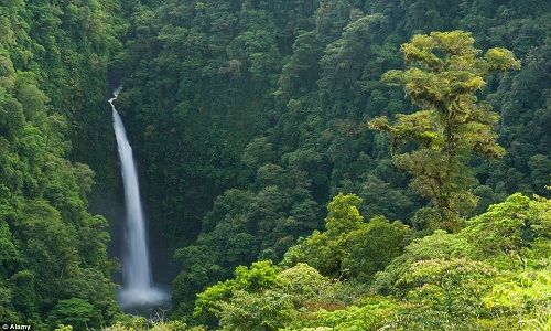 kerala tour packages from ahmedabadby air
